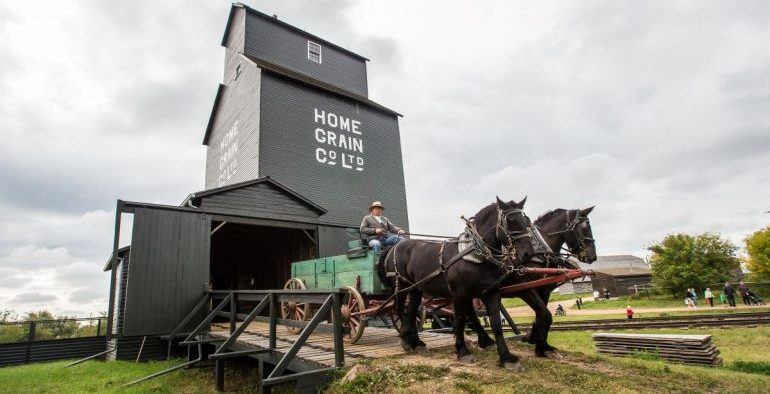 Ukrainian Cultural Heritage Village Horse team and wagon coming out of grain elevator Ukrainian Adventure
